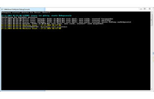 GWeDevel DoMyJob Debug-Console